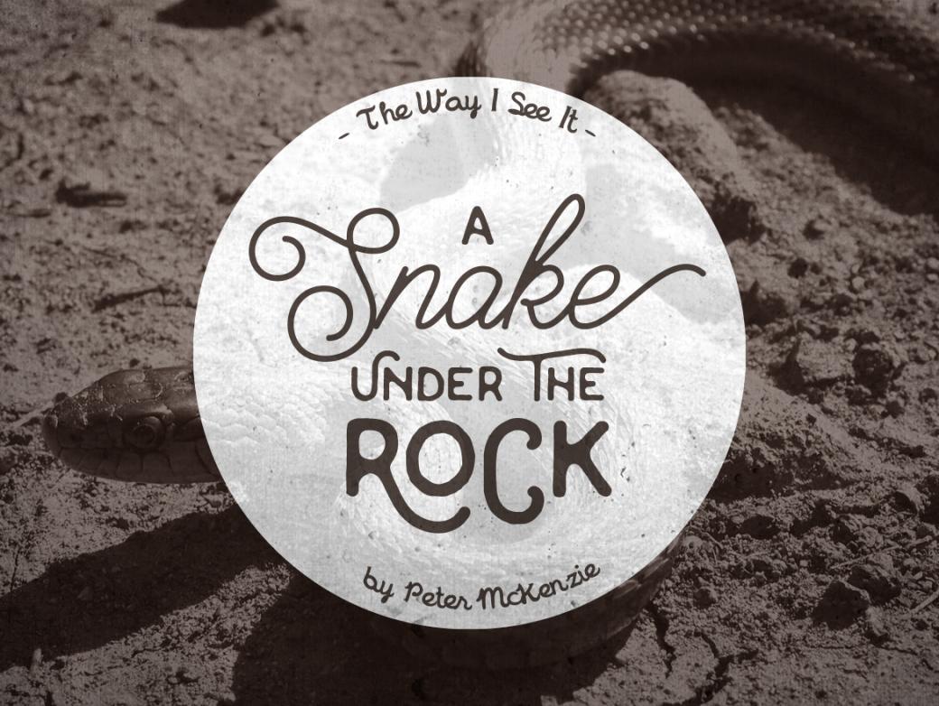 a-snake-under-the-rock_eng-1170x880